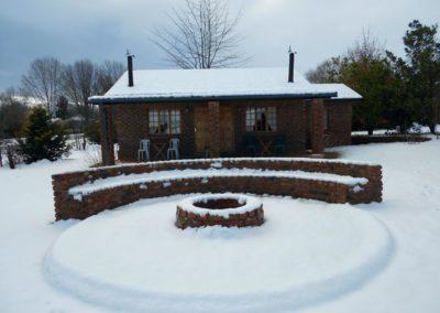 Pin Oaks Snow